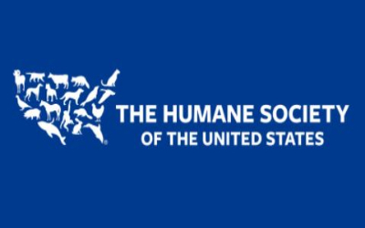 accelHRate Recruits Chief People Officer for U.S. Humane Society