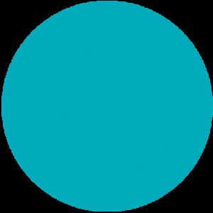 blue circle 2 300x300 - blue-circle-2