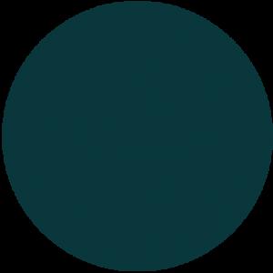 teal circle 1 300x300 - teal-circle