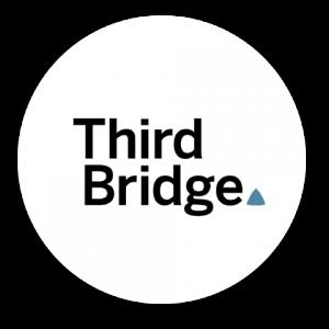 third bridge circle 300x300 - third-bridge-circle